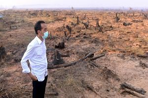 Indonesian President Joko Widodo surveying the burnt land yesterday in Banjarbaru, South Kalimantan, where he also visited emergency workers deployed to help fight the fires there.