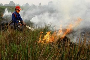 An Indonesian man using a hose to put out a fire in Banyuasin on Oct 7, 2015.