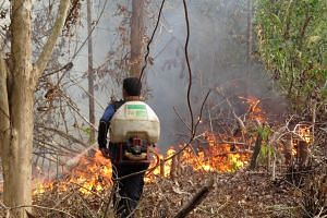 This handout photo taken on Sept 25, 2015, by the Borneo Orangutan Survival Foundation shows a technician from the BOSF Samboja Lestari Orangutan Reintroduction Program trying to put out fire using a fertilizer sprayer filled with water in Samboja, i