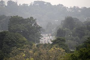 Hazy conditions on the Pan-Island Expressway near Bukit Timah at around 6pm yesterday, when the 24-hr PSI reading was 102-113.