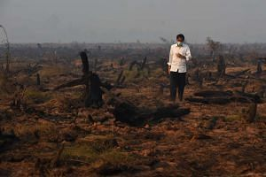 A picture taken on Sept 23, 2015 shows Indonesia's President Joko Widodo inspecting a peatland clearing that was engulfed by fire.
