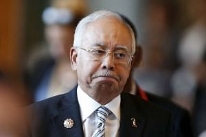 Mr Najib declined to comment further when asked how Hamidah had breached party discipline.