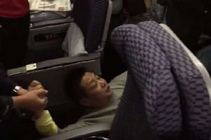 University professor Lu Yong has been removed from his position after creating trouble on a United Airlines flight.