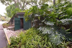 During the first phase of the bunker's reopening from March to May, visitors will get to go on 'high-quality guided tours' costing $18 for adults and $9 for children, said the Singapore History Consultants director Jeya Ayadurai. There will be around