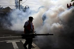 City workers fumigate the Jardines de Merliot neighbourhood in Santa Tecla, El Salvador on Jan 29, 2016.