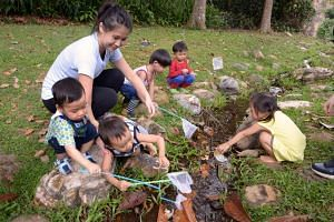 Ms Wee Xinyan, 30, a co-founder of Treebubs, conducting a Mandarin storytelling session for toddlers at Bukit Batok Nature Park last week. Treebubs conducts two-hour sessions of language immersion in the outdoors. It believes less structured play res