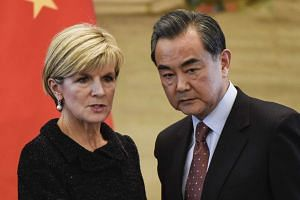 Speaking during Ms Bishop's visit to Beijing, Mr Wang said Canberra should not encourage any moves by Tokyo to reinterpret its pacifist Constitution.