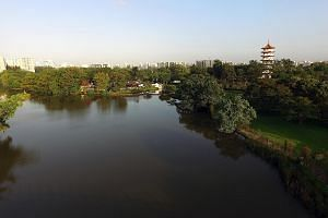 The rejuvenated Jurong Lake Gardens, which will be progressively completed from 2018, will offer residents a green reprieve from city life.
