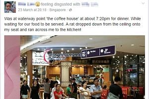 Ms Lim's post of her encounter last Wednesday has been shared on Facebook more than 100 times.