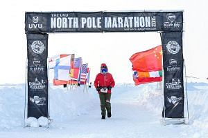 Last year, Ms Lau completed only 28km of the 42.195km marathon in the North Pole (above) as her shoes were soaked in the snow and she suffered frostbite when she removed her fogged-up goggles. She was the oldest participant then. This year, equipped