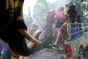 Elephants spraying water on tourists ahead of the Songkran festival in Ayutthaya, Thailand, on April 11.