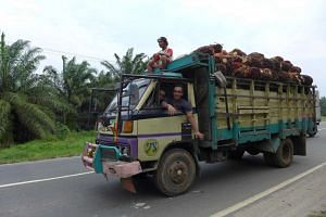 A truck transporting palm fruit bunches to a mill near Medan in North Sumatra in this file photo.