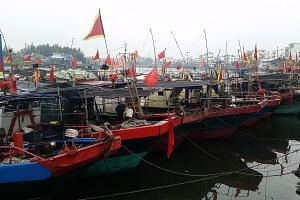 Fishing boats lining the port of Tanmen in Hainan. Locals who spoke to the writer last month cited depressed prices of certain seafood and stricter Chinese enforcement against giant clam harvesting as reasons for not heading out to sea temporarily.