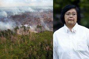 An aerial view of a forest fire burning near the village of Bokor, Indonesia. According to a Foresthints.news report posted online, Ms Siti (right) was referring to comments made by her Singaporean counterpart at a forum in Singapore last Friday.