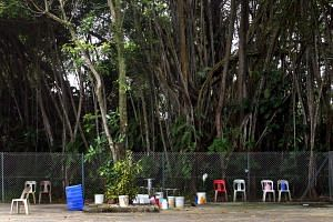 The Sembawang hot spring used to be a hot hangout, but is now quieter.