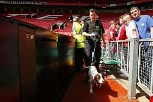 Police use sniffer dogs as fans are evacuated from the stadium before the match at Old Trafford on May 15, 2016.