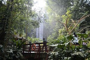 The Waterfall Aviary at the Jurong Bird Park.
