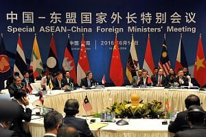 Singapore Foreign Minister Vivian Balakrishnan and Chinese Foreign Minister Wang Yi - the co-chairs at a special Asean-China foreign ministers' meeting - with their counterparts from Asean member nations in south-west China's Yunnan province yesterda