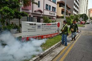Workers contracted by the NEA carry out fogging at Lorong 30 Geylang to fight against dengue in the area.