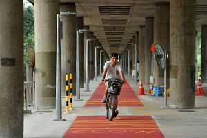 A cyclist on the red cycling path under the MRT viaduct between Yio Chu Kang and Ang Mo Kio MRT stations.