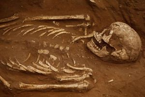 A skeleton is seen after it is unearthed during excavation work at the first-ever Philistine cemetery, at Ashkelon National Park in southern Israel, on June 28, 2016.