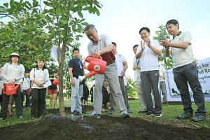 PM Lee Hsien Loong watering the Lowland Fox-Glove tree he planted at the tree planting event at Sengkang Riverside Park on July 9.