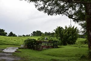An artist's impression of the Rainforest Park (left) and the site of the former Mandai Orchid Gardens (right), home of the new Bird Park.