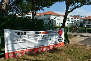 Singapore is facing another possible surge in dengue infections as the National Environment Agency (NEA) reports rising numbers of the Aedes aegypti mosquito that spreads the disease.