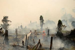 Police and a fire fighter from a local forestry company try to extinguish a forest fire in the village in Rokan Hulu, Riau province, Sumatra, Indonesia on August 28.