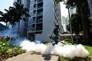 Thermal fogging around Block 50 Sims Drive on August 29.