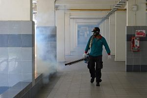 "Thermal fogging being carried out in Sims Drive on Sunday. Singapore is in the midst of its traditional peak dengue season from June to October, and NEA said the Aedes aegypti mosquito population ""remains high""."