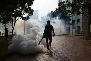 The local authorities will be continuing mosquito-control operations such as fogging in the Zika clusters. As of Friday, 194 breeding spots had been destroyed in these places.