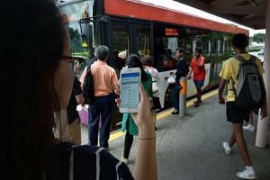 A commuter looking at her mobile app for the bus arrival timings at a bus stop.