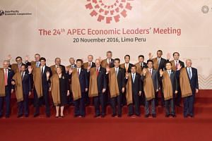 Heads of Apec nations taking a 'family photo' at the Apec summit.