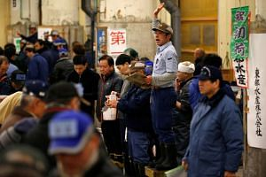Auctioneers raising their hands as they start the New Year's auction of the frozen tuna while wholesalers check the quality of frozen tuna displayed at the Tsukiji fish market in Tokyo, on Jan 5, 2017.