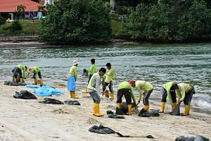NEA contractors from Ramky Cleantech Services Pte Ltd clearing the oil stained sand at Changi Beach on Jan 5, 2017.