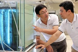 The co-founders of NanoSun, Prof Sun (left) and Mr Wong, intend to expand the water treatment start-up further. The company has developed a way to produce self-cleaning, 3D-printed microfiltration membranes, and is now looking for expansion capital t
