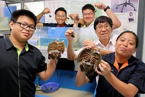 Institute of Technical Education (ITE) College West students (left to right) Dave Chong, Eunos Chong, Douglas Yii, Nurul Hanna Abdul Yakob and ITE lecturer Mr Hoo Pek Teng clinched first prize in the Sembcorp Marine Green Wave environmental care comp