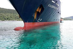 The Caledonian Sky, a British-owned cruise ship, smashed into pristine coral reefs causing extensive damage in Raja Ampat, a remote corner of Indonesia known as one of the world's most biodiverse marine habitats.
