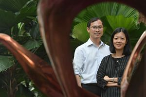 The study on how the Zika virus damages an unborn foetus' brain, conducted by Prof Lisa Ng from A*Star's Singapore Immunology Network and Prof Jerry Chan from KKH, is the first to look at the effects of a Zika infection on human foetal tissue.
