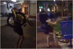The teenager was filmed throwing the bicycle before stomping on it several times.