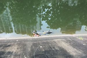 An oBike was found in a canal in Punggol on Wednesday (May 3). The bike-sharing company will be lodging a police report.