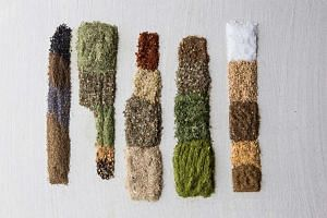 Spice blends that Sercarz recommends, from left: Apium, Estrago, Limonit, Muraya and Sal.