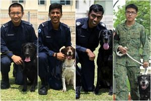 (From left) Private Valesko Seow with an SCDF urban search and rescue dog, a labrador; Private Sanjay Nair with an SCDF urban search and rescue dog, a cocker spaniel; SSgt Jayaganesh from Tuas Integrated Checkpoint with an explosive detector dog, a l