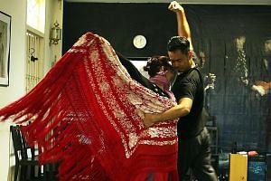 Elements by Flamenco Sin Fronteras