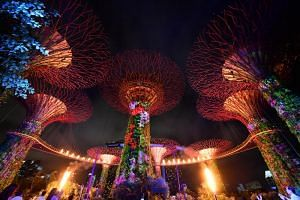Catch an iridescent kaleidoscope of colour at Gardens by the Bay, with a dramatic projection of images on the iconic Supertrees, set to music. At the same time, performers will put up an integrated show as they synchronise their choreography with the