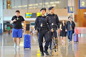 Staff Sergeant Joshua Lo, seen handling German shepherd Kora, and Senior Staff Sergeant Koh Eng Ann (right) patrolling Changi Airport's Terminal 2.