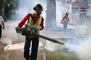 Pest control and National Environment Agency officers fogging Simon Place and the surrounding area after the first Zika cluster of the year was reported there, on March 30, 2017.