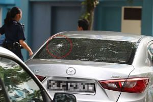 "The group of at least 17 were conducting ""gatecrashing"" activities at a carpark in Woodlands when someone fired pellets at two cars."