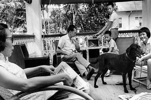The Lee family relaxing with their black labrador on the verandah of their Oxley Road home in May 1965.